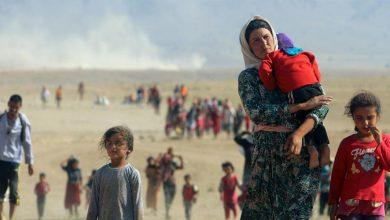 صورة الانتحار أو العنف أو الطلاق: عن حياة النساء الإيزيديات في المخيمات