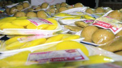 صورة فكرة صغيرة تتحول إلى معمل لانتاج الأكلات الشعبية العراقية
